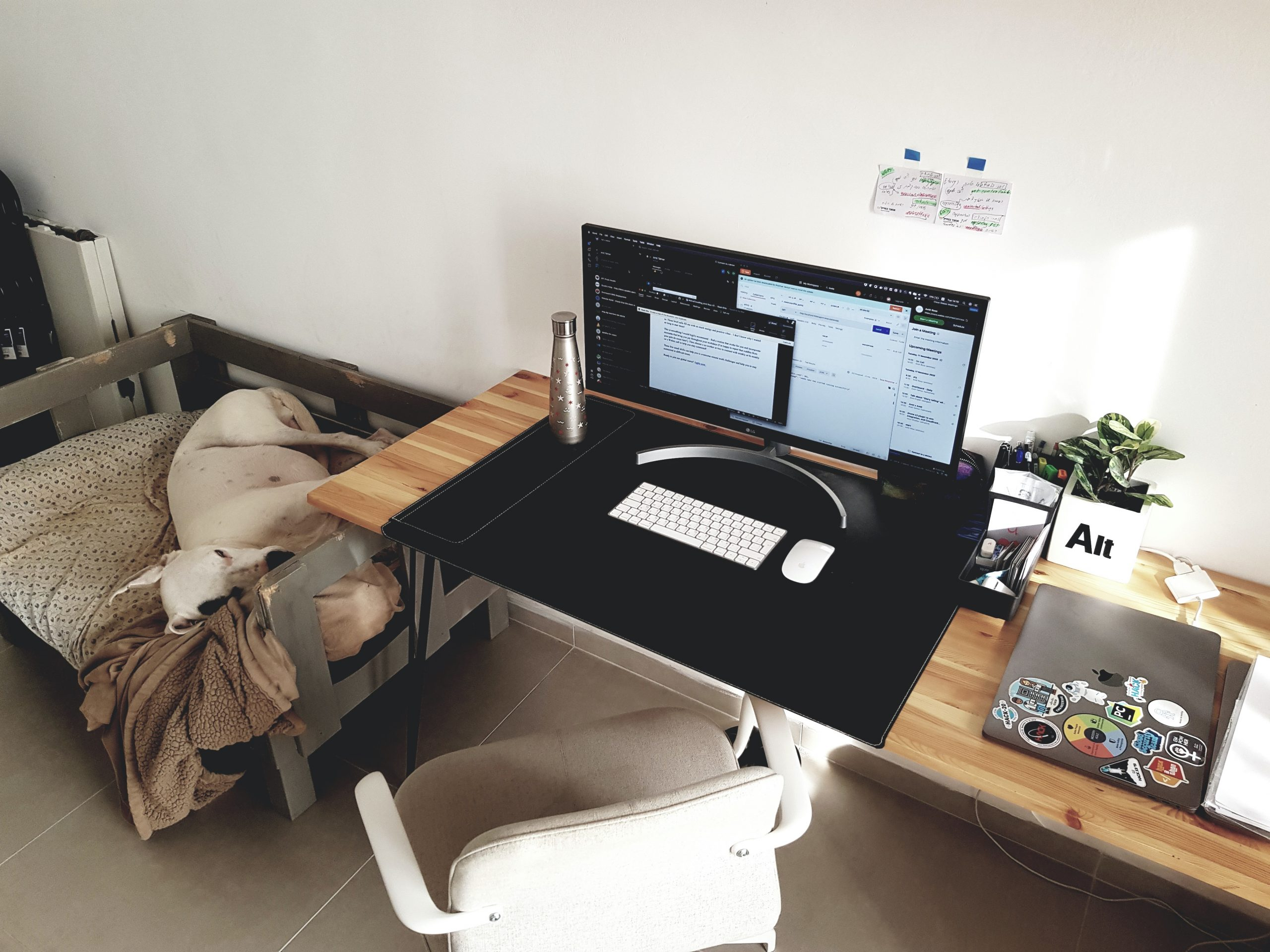 Overcoming Problems of Remote Work