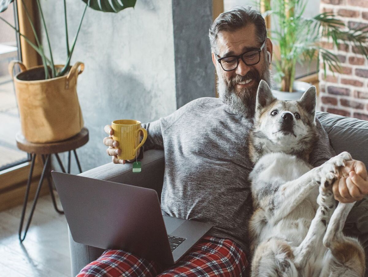 Chewy Has Revolutionized Family pet Care Customer Service